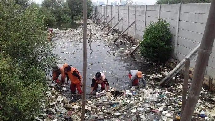 Petugas Gabungan Lingkungan Hidup Gerebek Sampah di Hutan Mangrove Marunda Cilincing