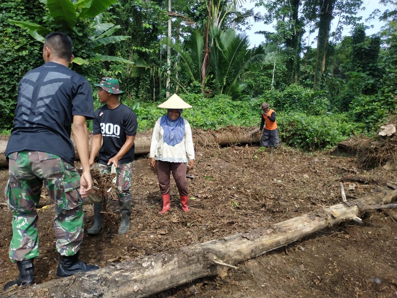 Satgas Raider 300 Bantu Masyarakat Buka Lahan Untuk Tanam Kakao