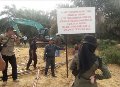 """Mardiansyah S.Hut., MSc: Dinas LHK Riau Jangan Terkesan Ada """"Main"""" di Persoalan Eksekusi PT. PSJ"""