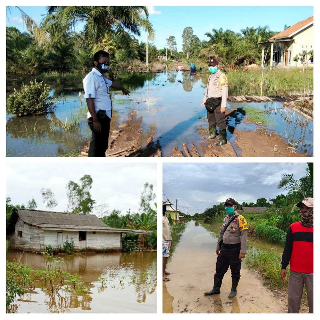 Kapolsek Rawa Pitu : Sebanyak 73 Rumah Sudah Terendam Banjir