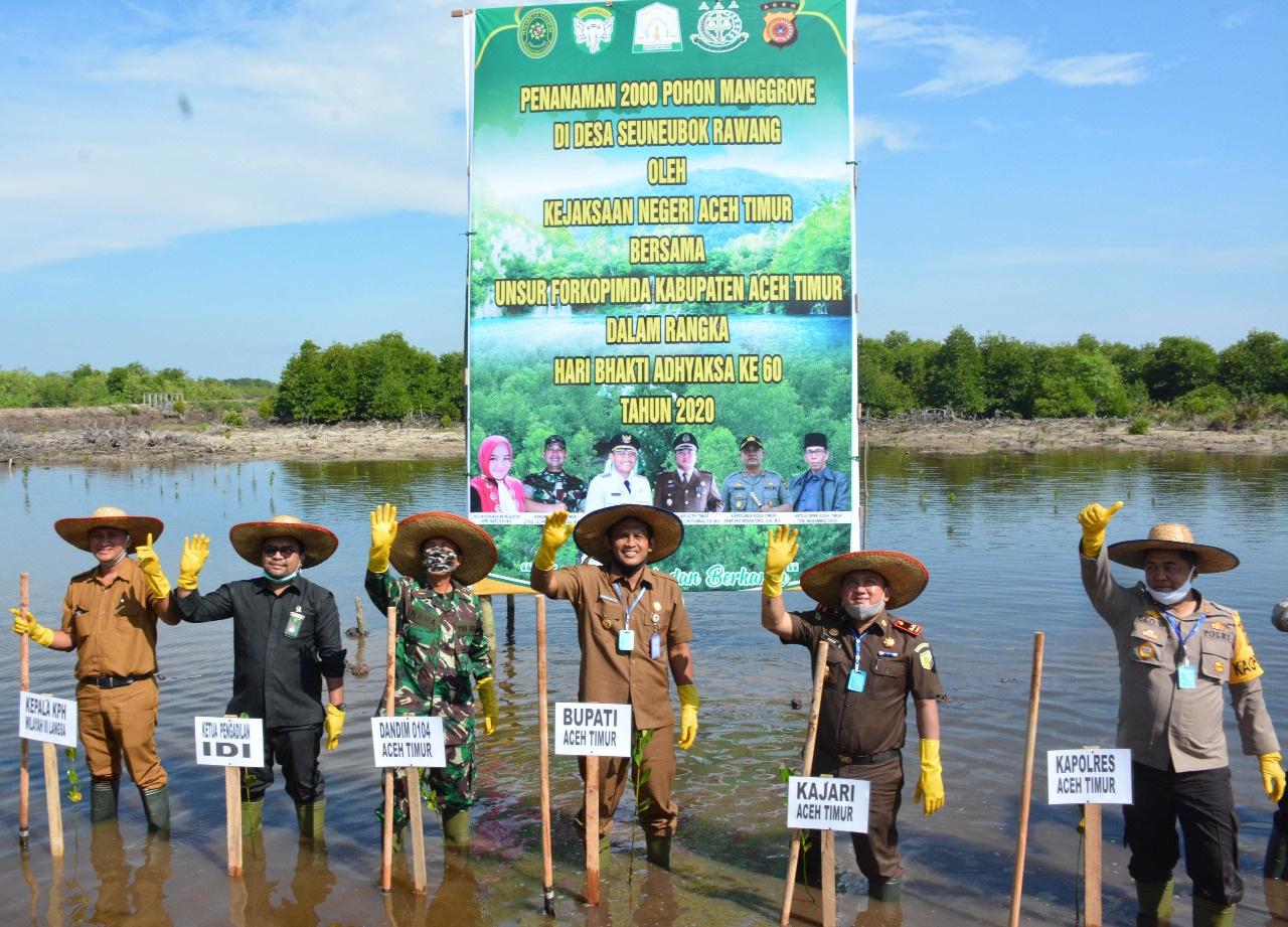 Kejari Aceh Timur Tanam 2.000 Bibit Manggrove, Bupati Rocky Ingatkan Warga Jaga Kelestarian Hutan