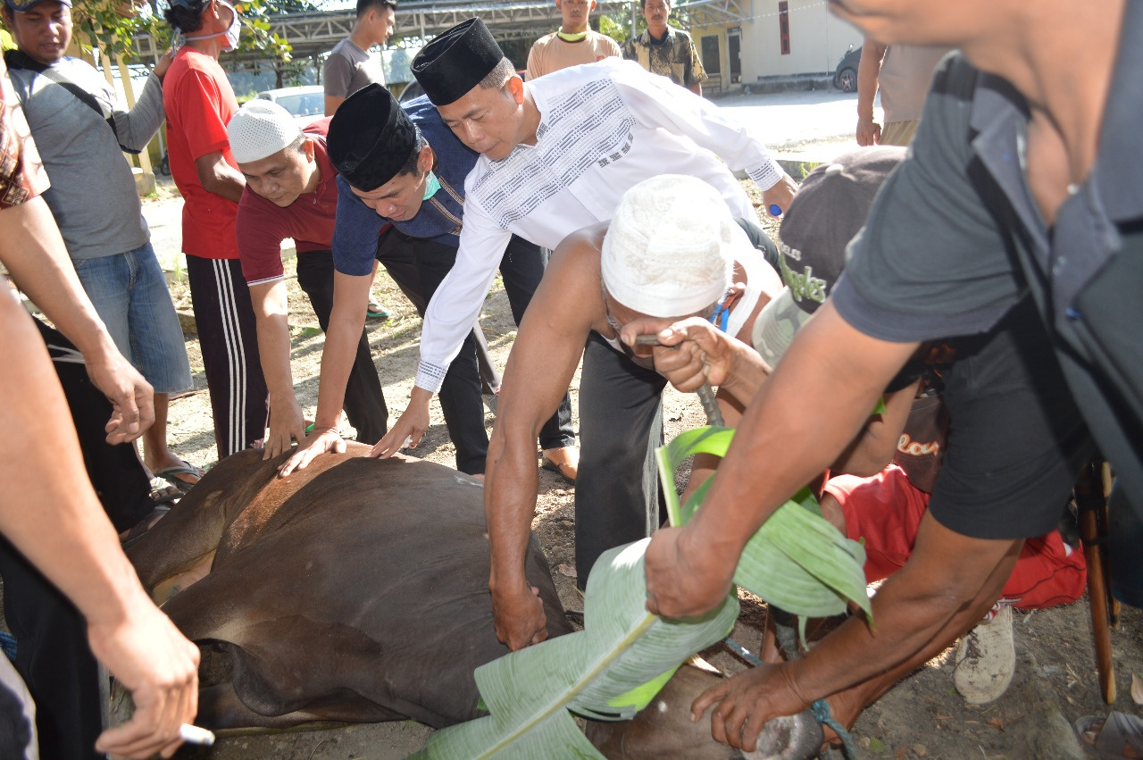 Momen Idul Adha 1441 H, Polres Tulang Bawang Sembelih 9 Ekor Hewan Kurban