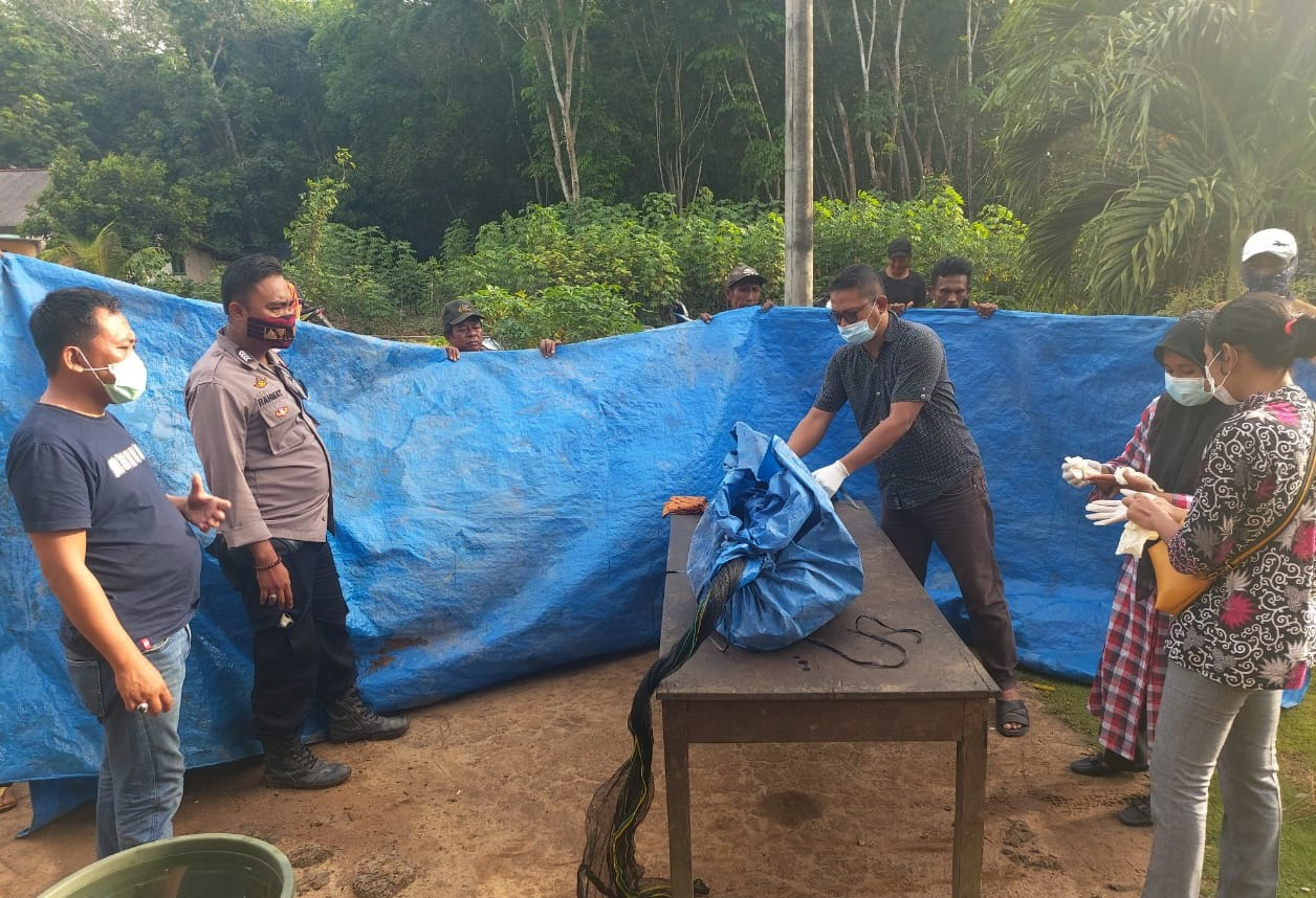 Polsek Dente Teladas Identifikasi dan Olah TKP Peristiwa Penemuan Mayat Mengapung di Rawa