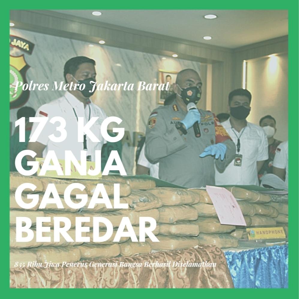 173 Kg Ganja Gagal Beredar di Jakarta, Polisi:835 Ribu Jiwa Generasi Penerus Bangsa Berhasil Diselamatkan