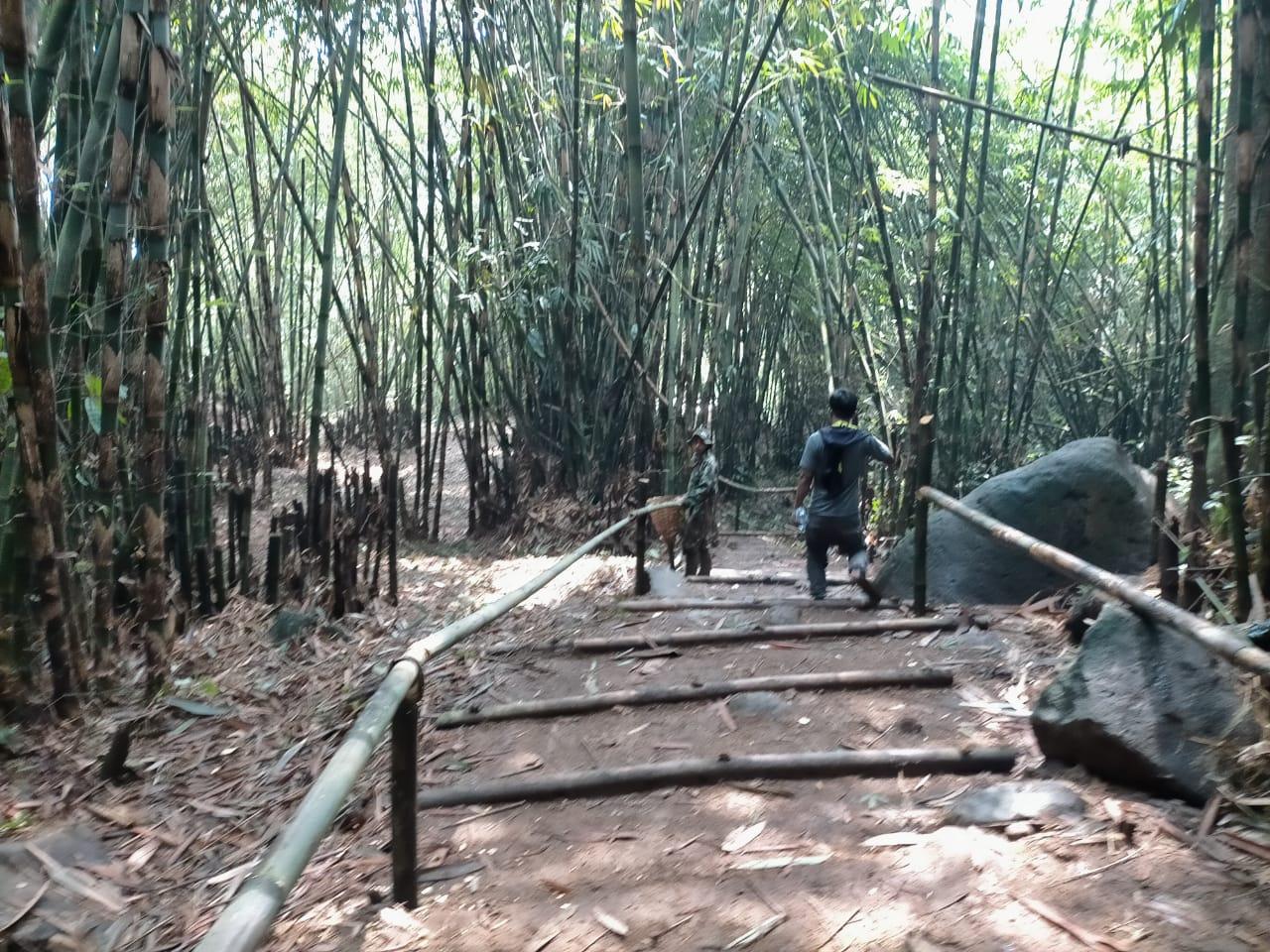 Panji Terispirasi Lahan Bambu Menjadi Wisata di Negara Jepang